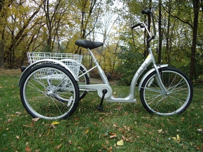 True Bicycle Low Step Trike